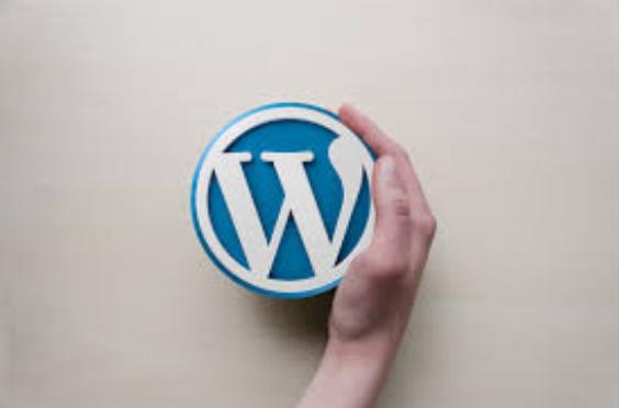 ¿Cómo administrar el contenido de su sitio WordPress?
