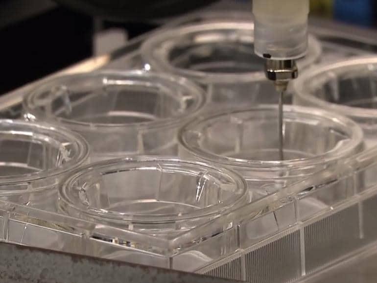 3D 'bioprinting': 10 cosas que debes saber sobre su funcionamiento
